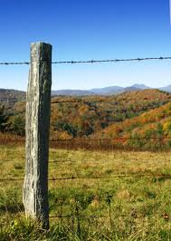 Wood Fence Posts - Wood Fencing Benefits 1