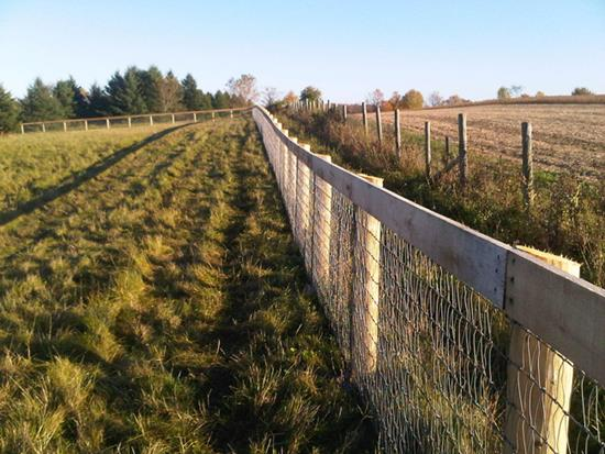 Choosing The Right Agricultural Fencing 1