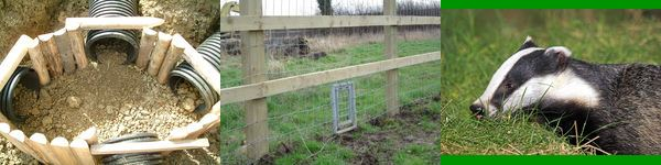 Fencing For The Environment 2